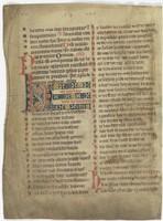 Fol. 243v ('CCXLIII', fragment 19)