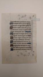 Lima_Verso