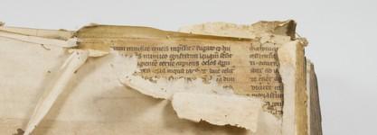 Fragment (detail)
