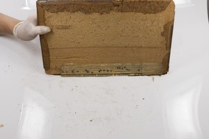 Bottom Board Inside with fragment