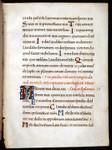 recto - Dunedin Public Libraries  RMM Fragment 26 (bifolium)