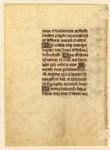 Buffalo_Verso