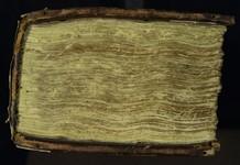 Cod3643_SU