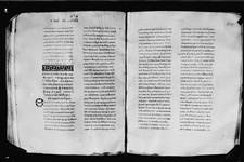 PLA_25 ff_228v_229r_main_codex_